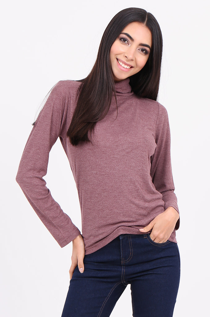 SF2147-WINE RIB TURTLENECK BASIC TOP