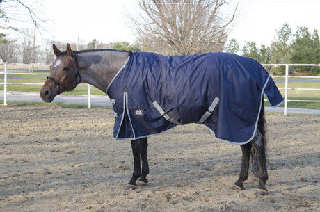 Turnout Blanket 600D, 210D Lining and 200grm Fill - Barn & Stable