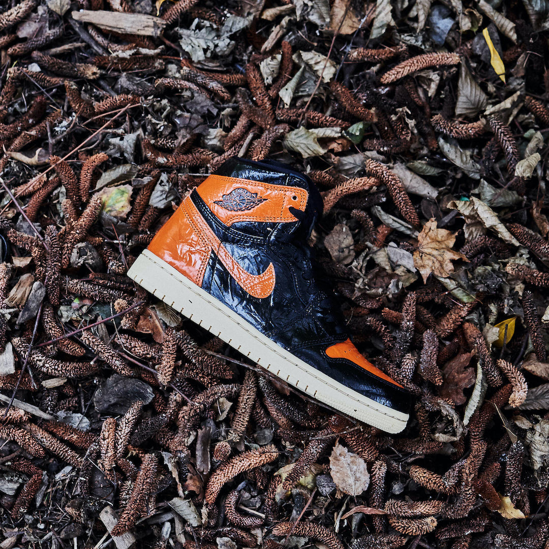 Wethenew-Sneakers-France-Air-Jordan-1-Retro-High-Shattered-Backboard-3.0-555088-028-01