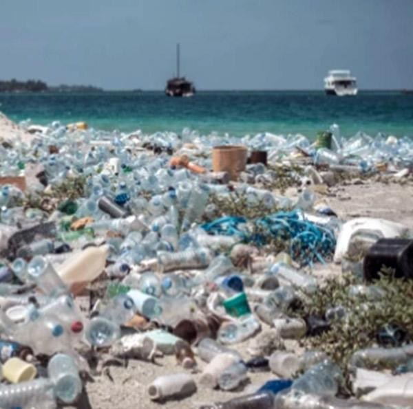 """We just can't afford to have harmful substances like plastic on the planet""."