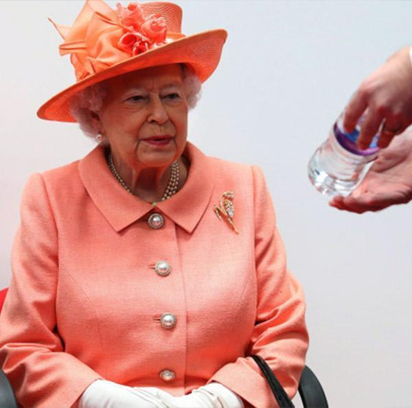 The Queen Taking Steps For Buckingham Palace To Go Plastic-Free After Watching Blue Planet II