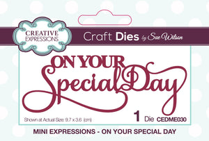 Sue Wilson Mini Expressions - On Your Special Day