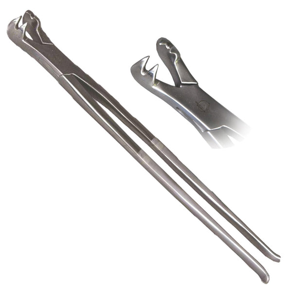 "Shop online for an Equine 4-Prong Extraction Forceps, 19"" Length, for a horse. Available for horse or pony. Ideal for gripping short crowned geriatric and fractured teeth."