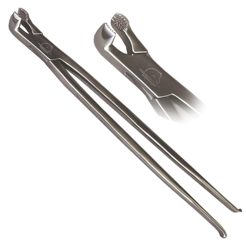 "Veterinary dental large extraction forceps that are 19"" in length. They have a concave knurled contact surface made to securely grip the tooth."
