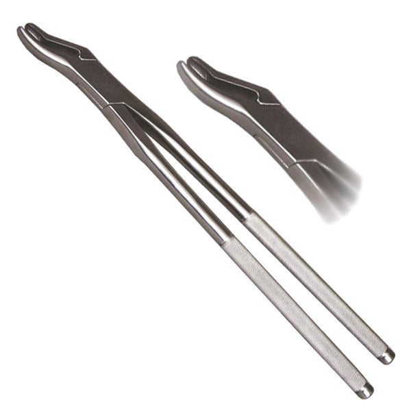 Veterinary dental extraction forceps. These forceps are equipped with a duckbill.