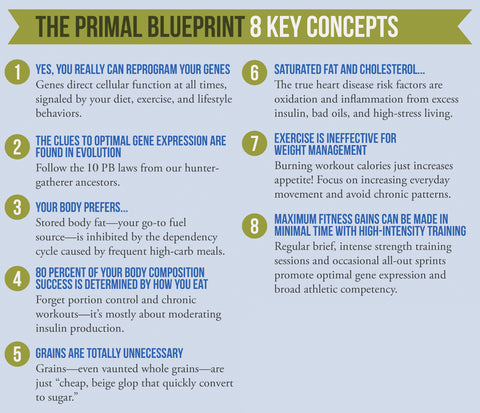 The primal blueprint 8 key concepts the 8 key concepts malvernweather Choice Image