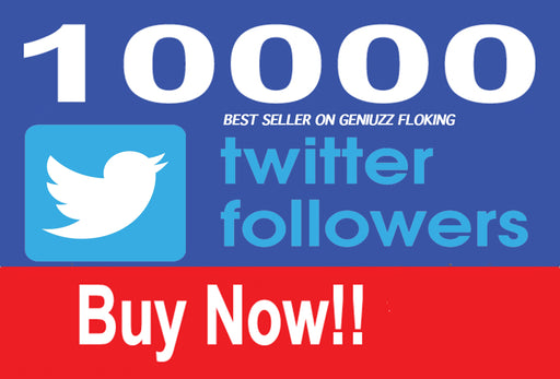 Give you 1,00 Real And GENUINE USA Twitter Followers instant