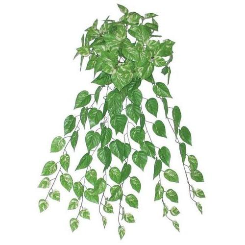 "34.75"" Decorative Artificial Green and White Pothos Plant Spring Floral Bush"