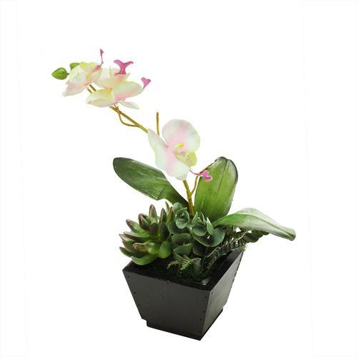 "13"" Artificial White  Pink and Green Orchid with Succulent Plants in a Decorative Square Black Pot"