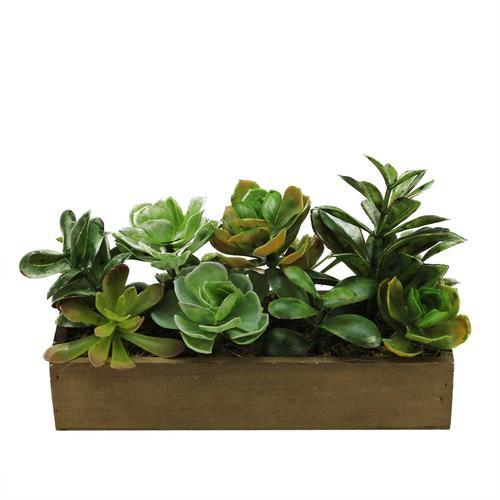 "11.5"" Artificial Mixed Succulent Plants in a Decorative Brown Wooden Rectangular Pot"