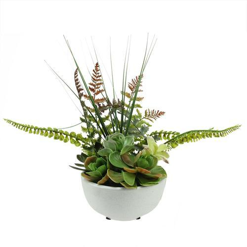 "11.5"" Artificial Mixed Red and Green Succulent and Fern Plants in a White Crackle Finish Bowl Pot"