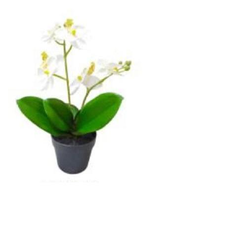 "10.75"" Tropical Artificial Flowering White and Yellow Orchid Plant in Pot Decoration"
