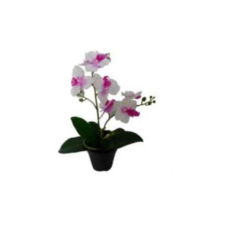 "16.5"" Tropical Artificial Flowering White and Pink Orchid Plant in Pot"
