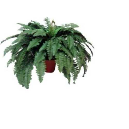 "19"" Lush Tropical Decorative Boston Fern Potted Artificial Plant"