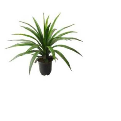 "27"" Decorative Tropical Spiky Leaved Artificial Potted Plant"