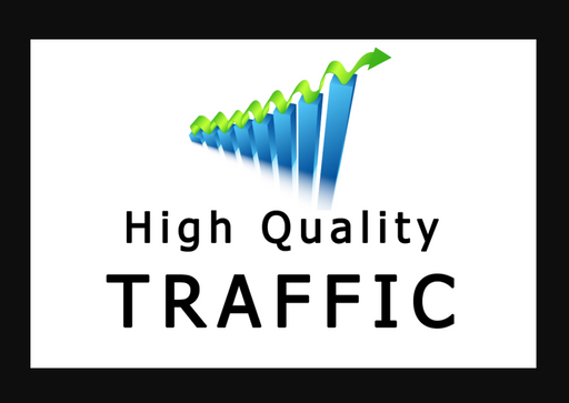 I Will Drive Real Targeted Traffic To Your Website From Google