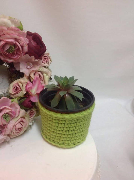 NEON Storage basket,Cactus plant pot cover set, crochet plant pot holder, indoor plant pot holder, small houseplants, cosy home,gift for her