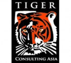 TIGER CONSULTING LTD
