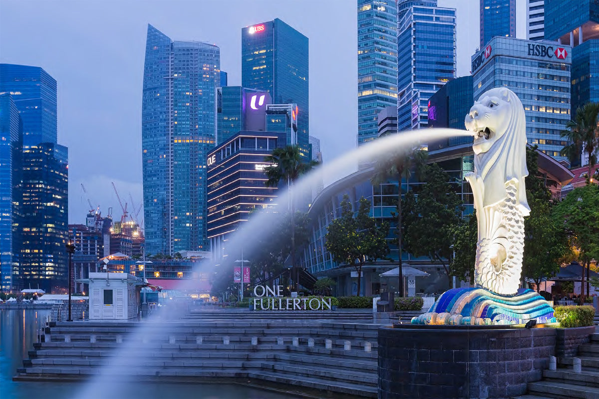 A guide to setting up business in Singapore
