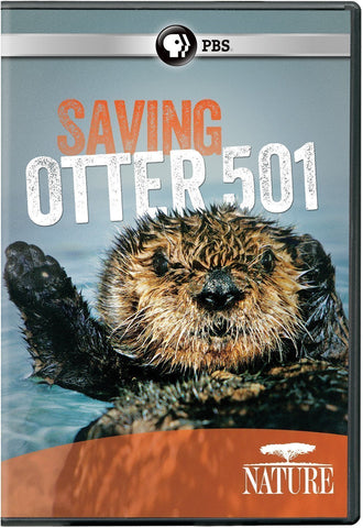 NATURE: Saving the Otter 501
