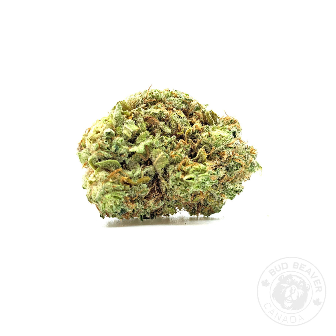 buy watermelon zkittlez cannabis online at bud beaver canada the best online dispensary in canada