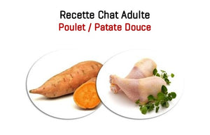 Duo Croquettes & Mousses - Chat Adulte 5 kg - Saveur Poulet