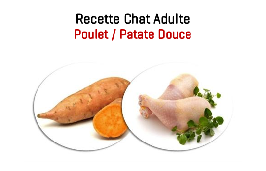 Alimentation Chat Adulte 1,5kg