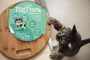 Little Big Paw Chat 85g Poissons