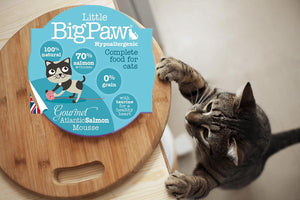 Pack 8 Mousses Little Big Paw Chat 85g - Saveur Saumon