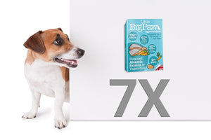 Pack 7 Mousses Little Big Paw Chien - Saveur Saumon