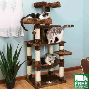 Kitty Play House