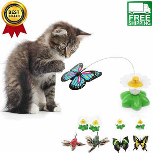 amazingly cat flying bird toy