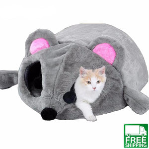 best Cat Bed house