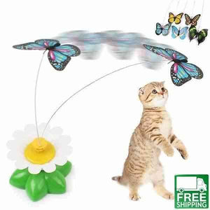 flying bird cat toy