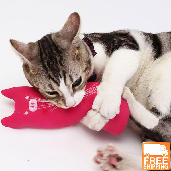 cat s cute biting catnip toys for happiness free shipping cat it all