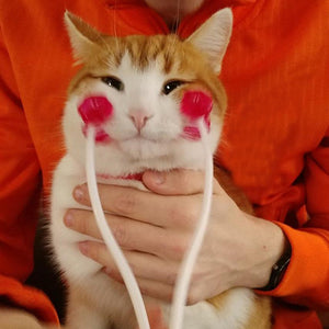 cat face massager