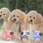 Stylish Sanitary Pants For Dogs
