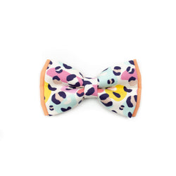 Spots in Multi - Double Layered Bow Tie