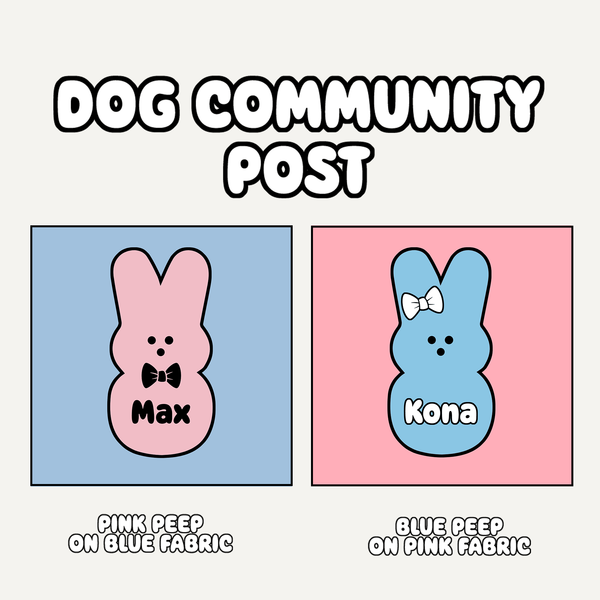 PRE-ORDER - Dog Community Post Bandana