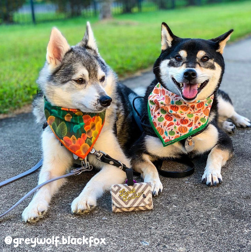 Fall Foliage - Double Sided Dog Bandana