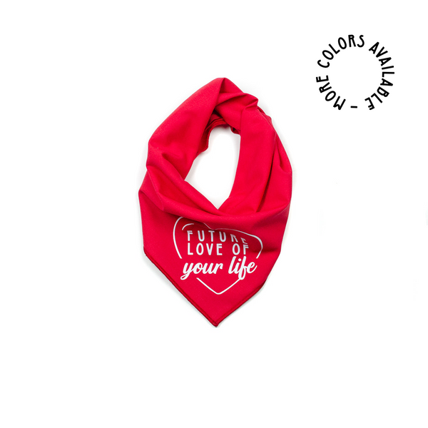 safe and sound satos rescue charity dog organization bandana