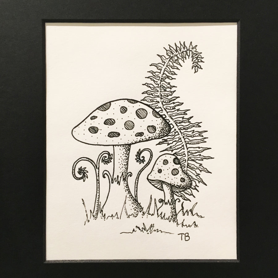 two mushrooms, ferns, pen and ink drawing on paper.