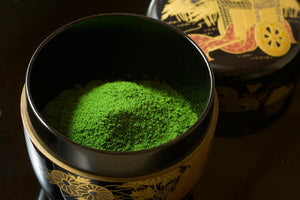 How to Grow Matcha (If it were that easy, everyone would do it)