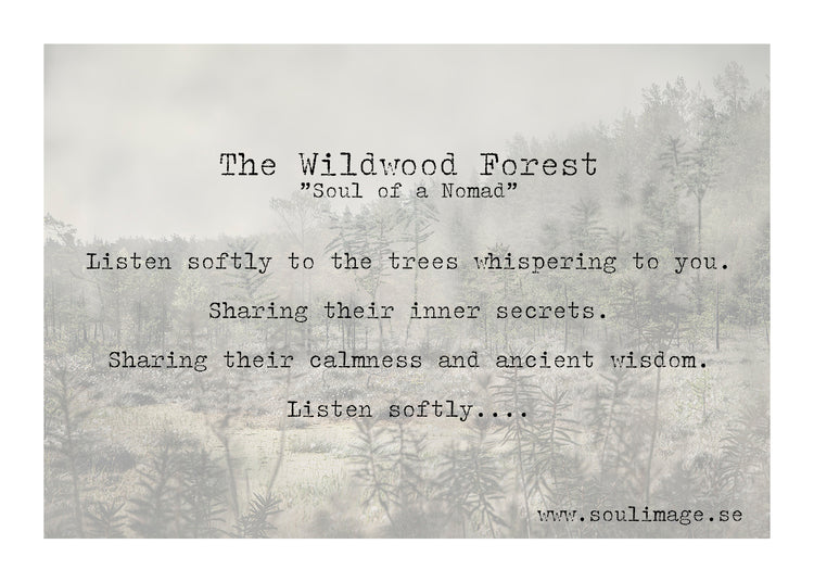 Poster - Wildwood Forest - 40x30cm - Linneas Hage