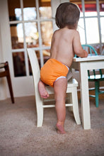 Load image into Gallery viewer, Thirsties Pocket Snap Diaper, One Size
