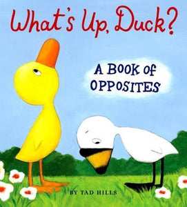 """What's Up, Duck?"" Book By Tad Hills"
