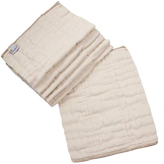 Organic Cotton Prefold Diapers, 6 Pack