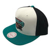 NBA Vancouver Grizzlies Mitchell & Ness Color Breakthrough - Vanbase