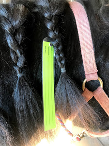 Braid-in Mane Tag