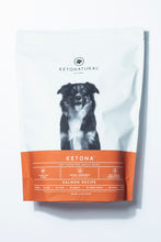 Ketona Dry Food For Adult Dogs Salmon Recipe -- 4.2 Pounds